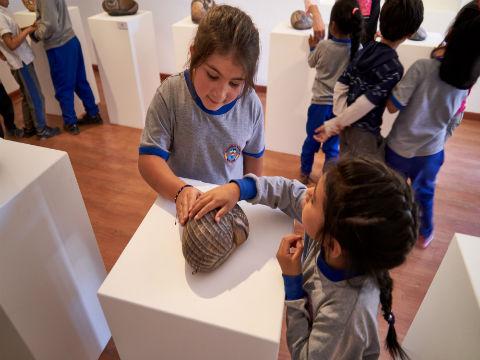 Con gran convocatoria culminó Exposición Roca Viva