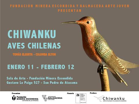 Espectacular exposición sobre aves chilenas en Sala de Arte San Pedro de Atacama